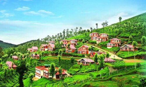 coorg ooty feature