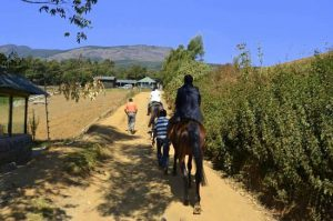 ooty horse riding